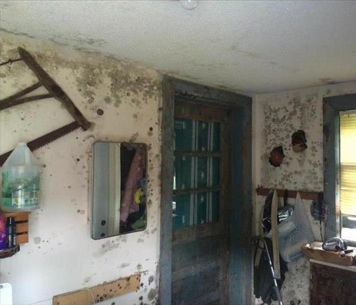 Mold Remediation & Reconstruction Before